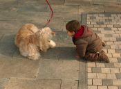 Cómo motivar a mi hijo a practicar deportes en compañía de animales