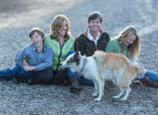 Como fortalecer la relación padre-hijo con mascotas