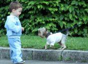 8 razones para que los niños crezcan con animales