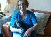 Historias de mascotas: Motita, la que llegó con el terremoto