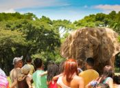 Costa Rica: Ejemplo de respeto por los animales y el medio ambiente