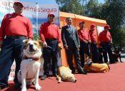 Crean primera brigada de seguridad canina en Maipú