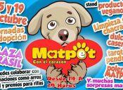 Jornada de adopción para perritos del refugio