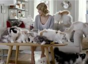 Decenas de gatitos acompañan a Taylor Swift en comercial de bebida