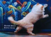 ¿Los gatos pueden pintar?