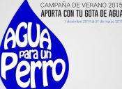 Policía Animal Chile invita a participar de su campaña #AguaParaUnPerro