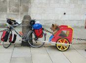 Perro acompañará a su dueño sordo en aventura en bicicleta por Europa