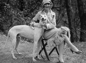 Estudio afirma que nuestras mascotas nos imitan