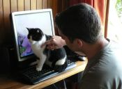 """""""Logré que mi compañero de departamento quiera a mi gata"""""""