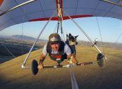 Inseparables: instructor de parapente y su perro vuelan juntos