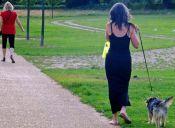 Los mejores perros para mujeres solas
