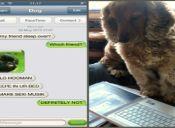 Tumblr te muestra lo que escribiría tu perro por chat