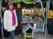 Estudiantes crean casas ecológicas y camas vibradoras para gatos