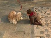 Los mejores amigos de los niños