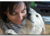 Rehabilitación Neuropsicológica: cuando tu perro es tu mejor terapeuta