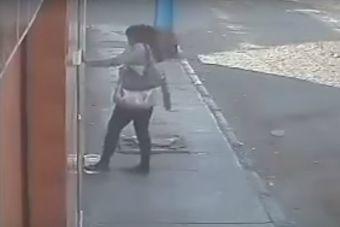 Mujer es grabada botando el agua de perritos de la calle (video)