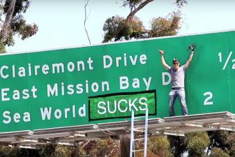 Steve-O y sus protestas para acabar con SeaWorld