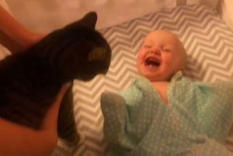 [Video] Una bebé que no puede contener la alegría al ver a su gato