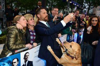 Actor Tom Hardy lleva a su perro al estreno de su nueva película para entregar un importante mensaje