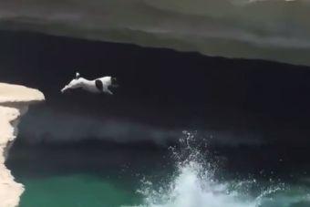 [Video] Con este salto se convirtió en el mejor clavadista de Australia