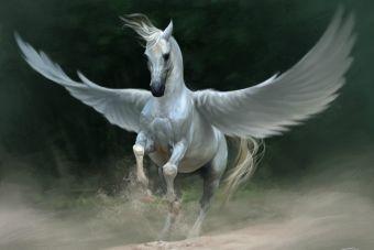 Animal Mitológico: El Grandioso Pegaso