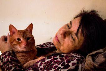 5 verdades sobre las mascotas y las madres/padres sobreprotectores