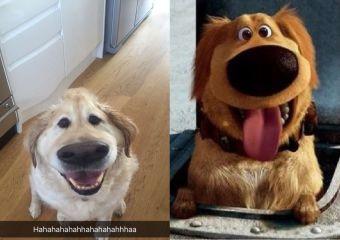 Filtro de Snapchat transforma a tu perro en Dug de