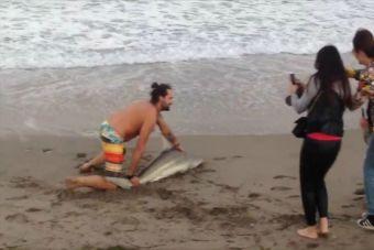 Un bañista saca a tiburón del mar para tomarse fotografías en las playas de California