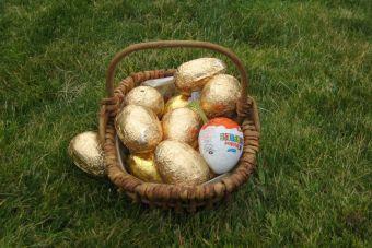 Cuida que tu perro no encuentre los huevos de pascua escondidos