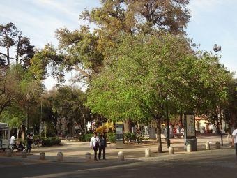 Los mejores lugares para pasear a tu perro en Santiago Centro