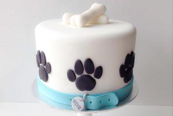 Hazle Una Torta De Cumpleaños A Tu Perro Mascotadictos