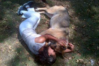 Historias de mascotas: La huidiza Maia