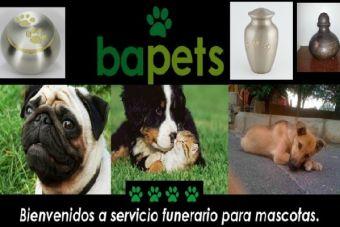 """""""Bapets"""": Única funeraria para mascotas con hidrólisis alcalina en Chile"""