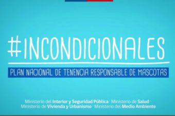#Incondicionales, el plan nacional de tenencia responsable