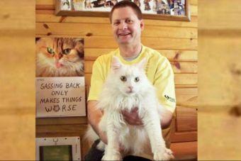 El hombre que padece de Asperger y construyó un paraíso gatuno en su hogar