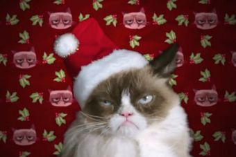 Grumpy Cat salta a la pantalla grande con película navideña