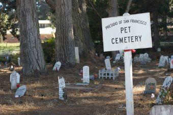 En Nueva York ahora pueden enterrarte con tu mascota