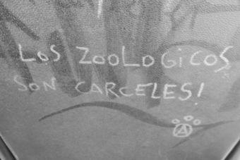 El debate sobre los zoológicos: ¿Son verdaderamente seguros?
