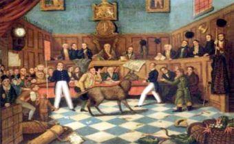 Primeras leyes por los derechos de los animales