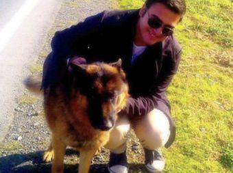 Todavía no existe una ley que regule la tenencia de perros