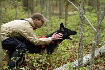 Top 5: aplicaciones que te ayudarán a entrenar a tu mascota