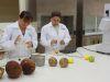 10 cosas en las que trabaja un: Ingeniero en Alimentos