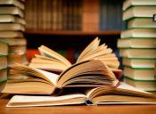 Universidad Adolfo Ibañez impartirá clases de pensamiento liberal