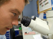 PSU Biología:  Diferencias entre ley, teoría, inferencia, conclusión y observación