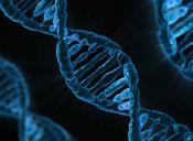 Revisa tus resultados con la Resolución del Modelo de Biología