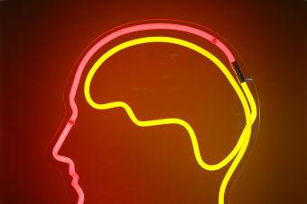 8 razones para estudiar psicología