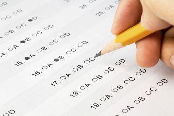 ¿Te gustaría hacer un test de intereses y habilidades? Prueba esta plataforma