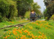 Imágenes inspiradoras: En tren por el antiguo ramal Rucapequén - Nueva Aldea