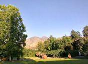 Fiesta de la Vendimia del Valle del Maipo, Buin