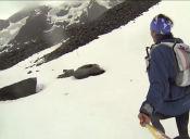 Ultra Fiord Chile 2015, 114 kilómetros en Patagonia Chilena